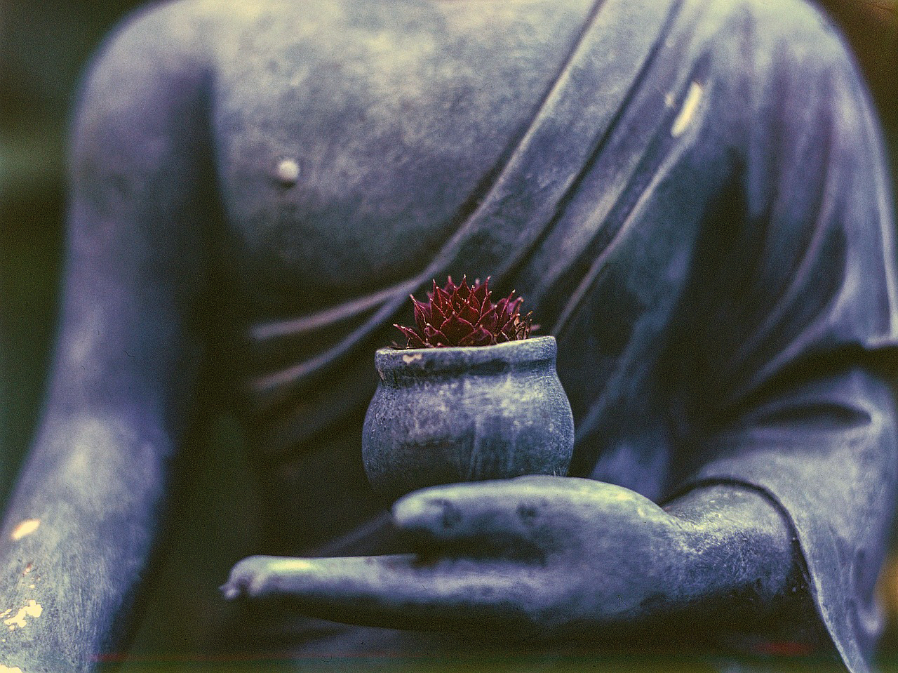 Online B-12: Buddhism and the 12 Steps of Recovery, May 16