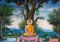 A Cessation of Suffering: The Four Noble Truths class, starting Oct 5