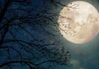 Full Moon Ceremony, October 24